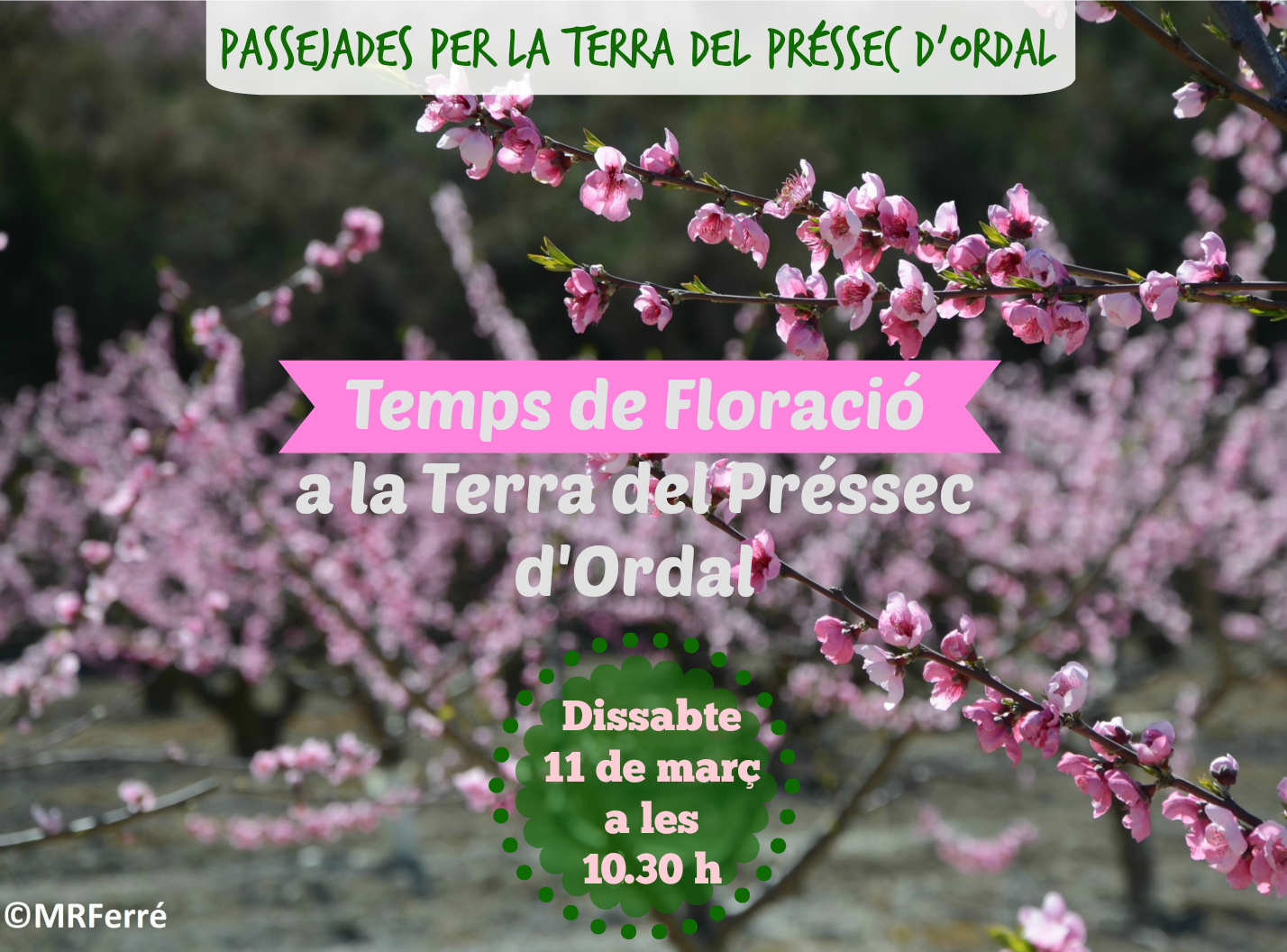 Floracio_MPO3_2