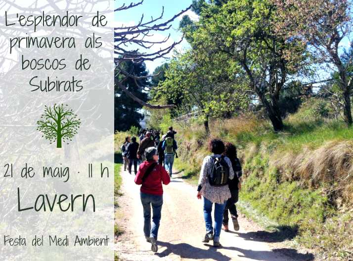 noticia_passejada
